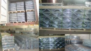 Masonry Joint Reinforcement Wire Mesh pictures & photos