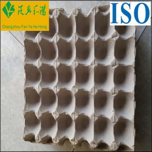 Recycle Paper Moulded Pulp Shockproof Egg Tray pictures & photos
