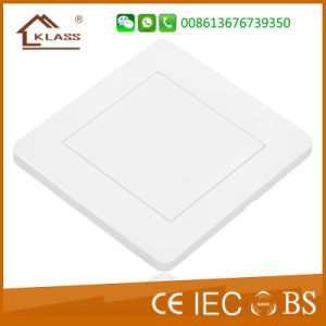 86*146 1gang White Electrical Blank Plate pictures & photos