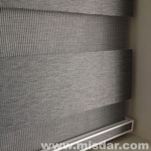 Zebra Horizontal Blind of Professional Supplier pictures & photos