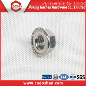 DIN6923 Flange Nut / Special Flange Nylon Lock Nut / Check Nut pictures & photos