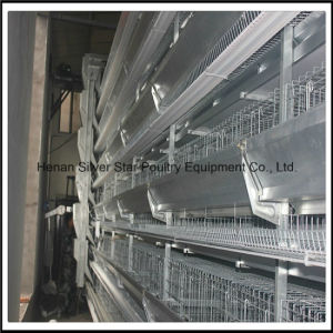 H Type Fully Automatic Egg Layer Cage pictures & photos