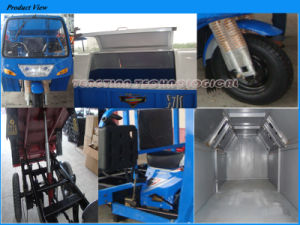Competitive Sanitary Cargo Tricycle pictures & photos