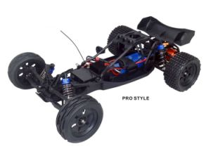 12402-1/12 Scale Ep Standard-1/12th 2WD Electric Power R/C off-Road Buggy pictures & photos