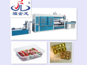 Plastic Lunch Boxes Forming Machine pictures & photos