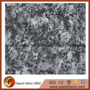 Imported Green Marinace Granite Shower Tile pictures & photos