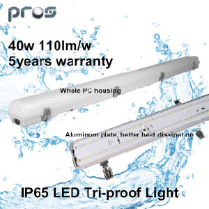 China Hot Sale 2FT/4FT/5FT LED Explosion Proof Lighting 40W IP65 5years Warranty pictures & photos