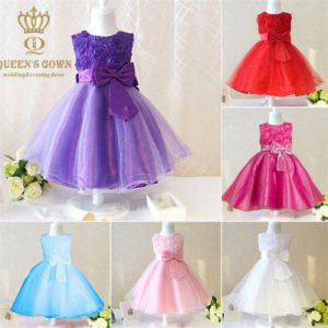 Elegant Princess Tutu Cute Little Flower Girl Dress