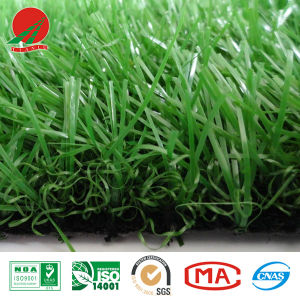 China Supplier, Beautiful Artificial Grass for Villa, Roof Garden, Backyard and Other Places