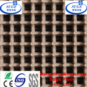 Interlocking Net Surface Basketball Court Flooring pictures & photos