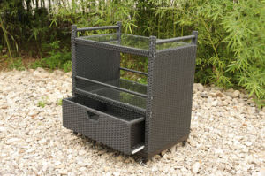 Rattan Wicker Hotel Garden Patio Outdoor Furniture Wine Trolley (FS-5550) pictures & photos