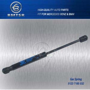 Auto Gas Spring for BMW 7 Series 51237185032 pictures & photos
