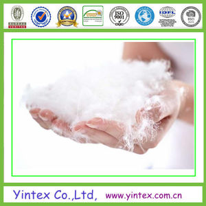 Good Quality 90% Washed White Duck Down pictures & photos