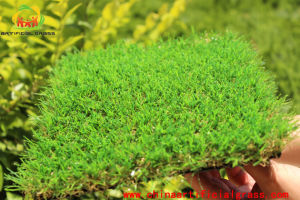 Non-Filling Artificial Grass for Garden Decoration From 9mm-40mm Height pictures & photos