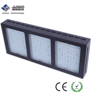 Wholesale 1000W LED Grow Light with Switchable Veg and Bloom for Vegetable Fruit Medical Plant pictures & photos