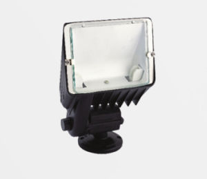 300W IP44 Garden Flood Light pictures & photos