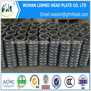 Professional Manufacture All Kinds of Dished Tube Cap Heads pictures & photos
