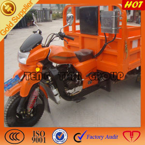 Three Wheeled Cargo Motorcycle pictures & photos