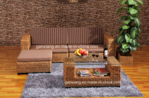 Leisure Living Room Furniture Sofa Set