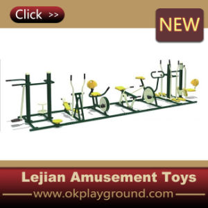 Hot Sale Outdoor Fitness Equipment (12170C) pictures & photos