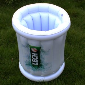 Inflatable Advertising and Promotional Cooler (PM161) pictures & photos