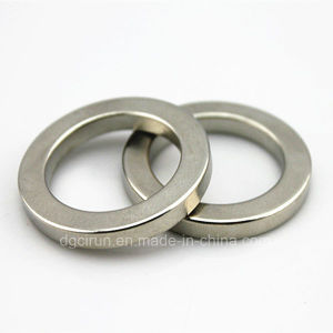 Sintered Rare Earth Neodymium Small Ring Magnets