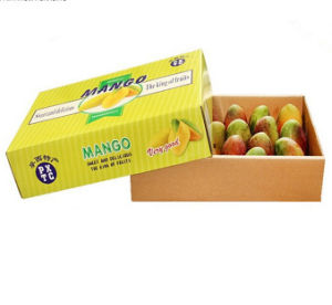 Lid Base Mango Gift Box