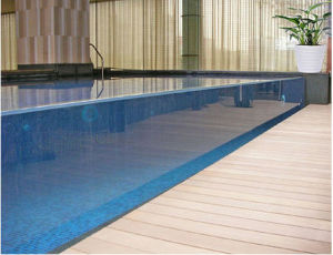 Large Blue Acrylic Panels for Swimming Pool pictures & photos