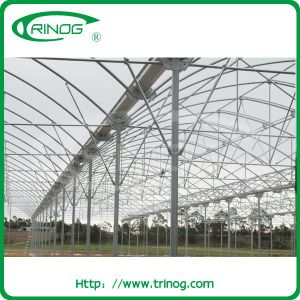 Multi span greenhouse in plastic film cover pictures & photos