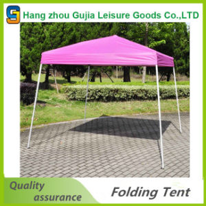 10′x10′ Garden Backyard Gazebo Canopy Tent pictures & photos