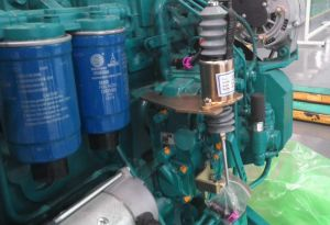 Water Cooled Deutz Diesel Engine (WP13D442E201) pictures & photos