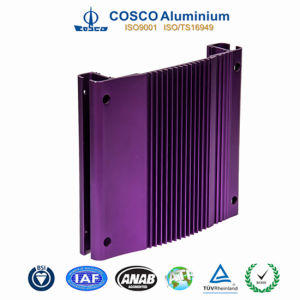 Anodizied Aluminum Enclosure for Car Audio pictures & photos