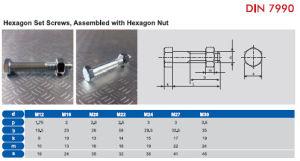 DIN 7990 Hexagon Set Screws pictures & photos
