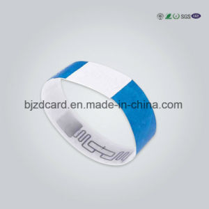 Festival Paper Customized Tyvek Wristbands pictures & photos