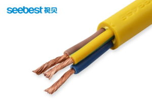 High Quality Thin Copper Wire, Elctrical Wire Insulation Codes with PVC Conductor pictures & photos