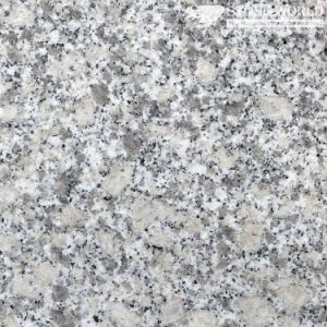Polished Silver Cloud G602 Granite Tiles for Flooring & Wall (MT010) pictures & photos