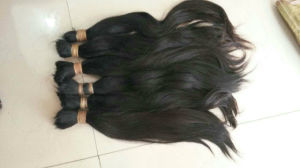 Top Quality Hair Bulk Virgin Remy Hair Raw Material Cut From Women pictures & photos