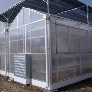 The Hot Commercial Garden PC Green House pictures & photos