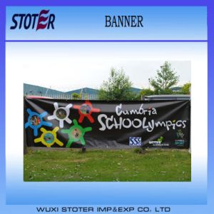 Cheap Promotion Printing Vinyl Banner pictures & photos
