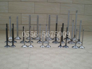 Wholesale High Quality Factory Price Engine Valves for Weichai 250 pictures & photos