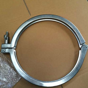 DIN11850 Dn250 Stainless Steel Heavy Single Pin Clamps pictures & photos