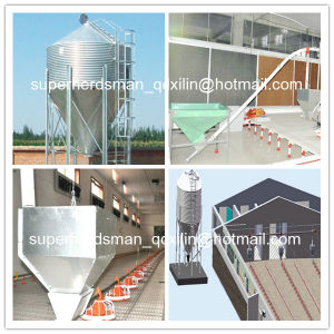 Full Set Automatic Poultry Equipment for Broiler Farm pictures & photos