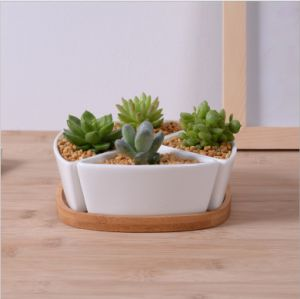 Triangular Ceramic White Flowerpot with Bamboo Base pictures & photos