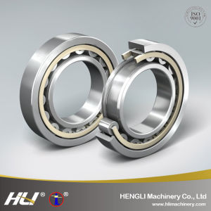 Engineering Machinery Roller Bearing Rn309 Cylindrical Roller Bearing pictures & photos
