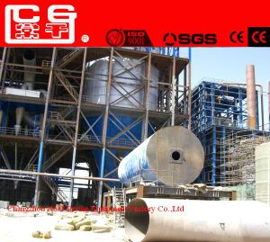 LPG Model Desiccated Coconut Centrifugal Spray Dryer pictures & photos
