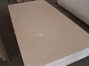 Hard White Maple Plywood pictures & photos