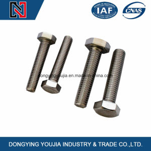 ISO4018 Full Thread Hexagon Head Bolts pictures & photos
