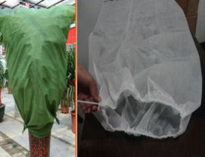 PP Non Woven Weed Control Fabric pictures & photos