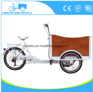 3 Wheel Electric Adult Cargo Tricycle for Carrying Kids and Pets pictures & photos