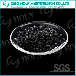 Carbon Black PP Masterbatch Manufacturer